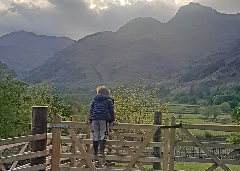 Harry Place Farm is a working fell farm situated in the Great Langdale Valley, a few miles outside of Ambleside.